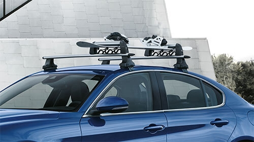 Roof-Mounted Ski Carrier (3 skis / 2 snowboards)