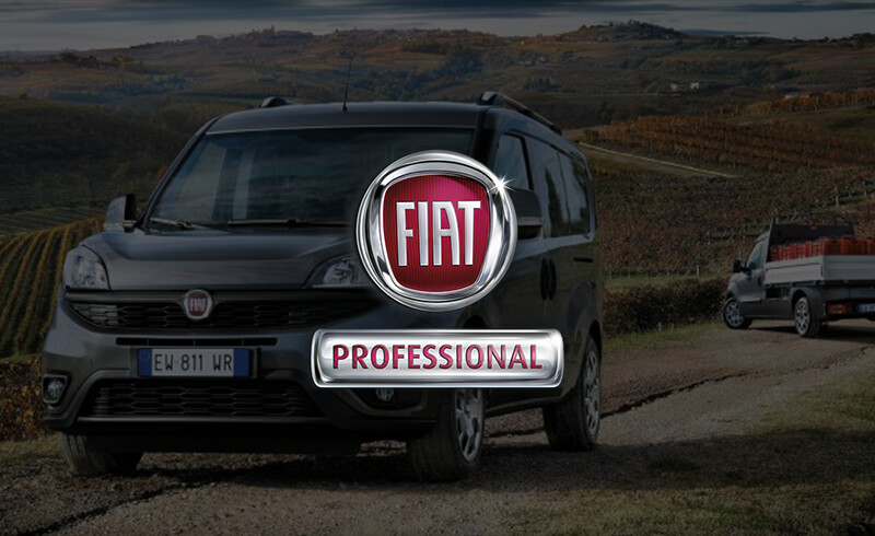 McCarroll's Fiat Professional Vehicles