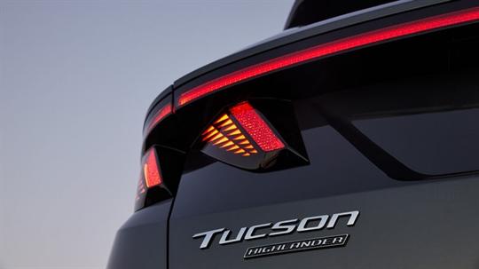Parametric rear tail lights.