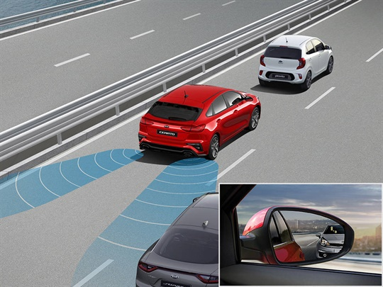 Blind Spot Detection (BSD)<sup>[S]</sup>