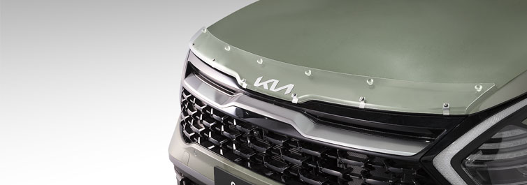 Slimline Door Visor Set (Smoke)
