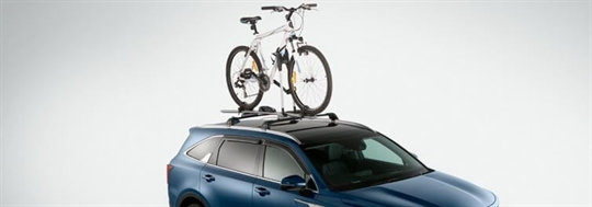 Roof Bicycle Carrier - Frame Mount