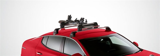 Snow Ski Carrier