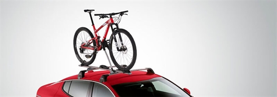 Roof Bicycle Carrier (Frame Mount)