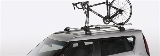 Roof Bicycle Carrier (Fork Mount)