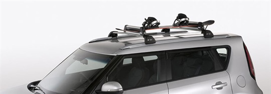 Ski & Snowboard Carrier
