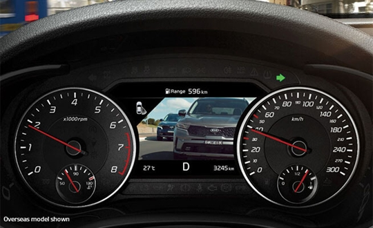 Blind Spot View Monitor*
