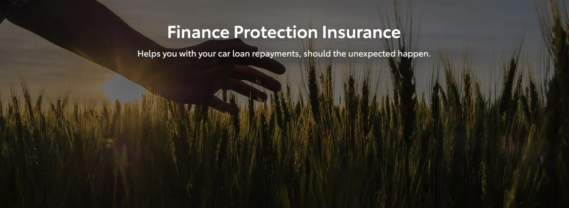 Finance Protection Insurance