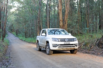 Volkswagen vehicle driving on a bush road