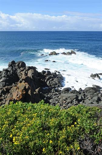 Overlooking the ocean and rocks